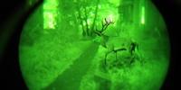 Beispiel einer grünen Bildröhre