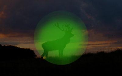 Jagd mit Nachtsichttechnik 2020