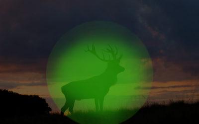 Nachtzielgeräte, Wärmebildzielgeräte für die Jagd, legal oder verboten?