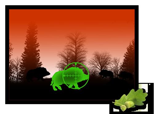Nachtsichtgeräte & nachtsichttechnik für die jagd: jagdfux