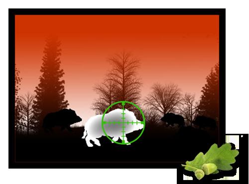 Nachtsichtgeräte nachtsichttechnik für die jagd jagdfux