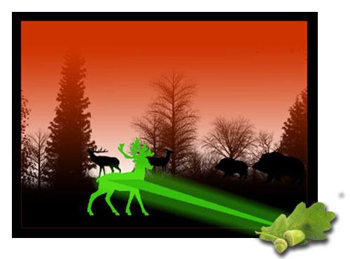 Nachtsichtgerät Laser